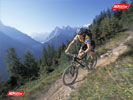 Mountain biking sweet Chamonix singletrack